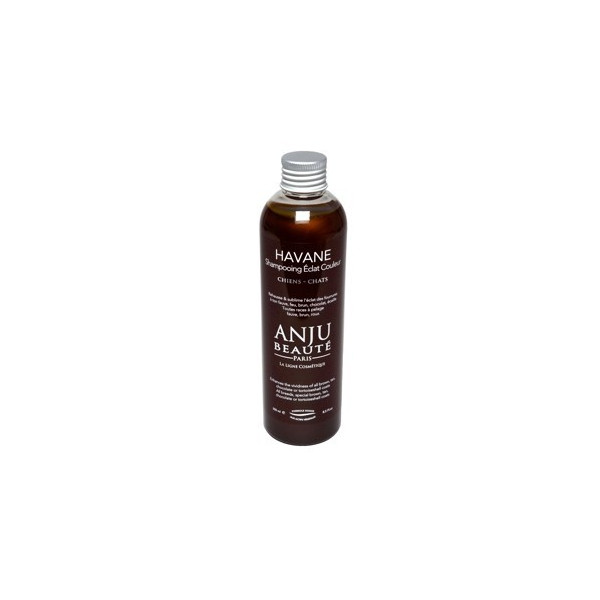 Anju Beauté Shampoo for Dogs and Cats with Chocolate Mantle - Havane 250ml