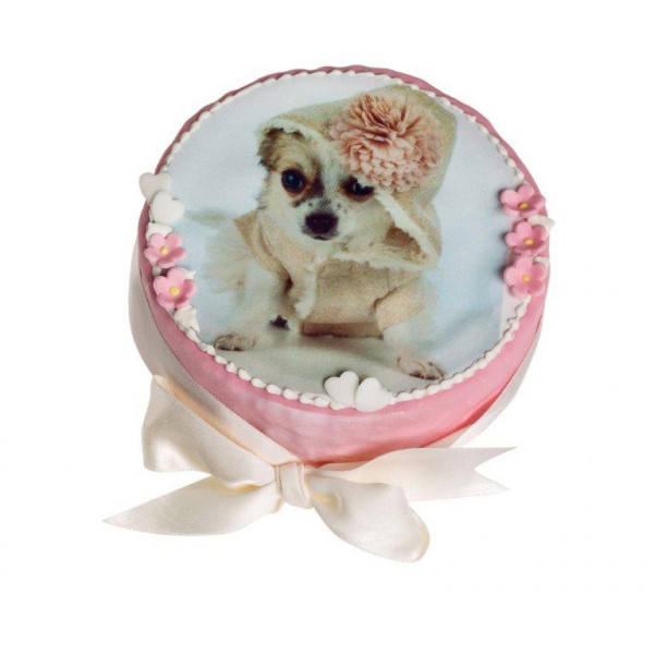 Dolcimpronte - Classic Cake-  2 colors - Customizable with Photo 300 GR