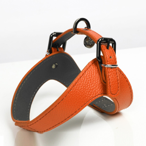 Milk&Pepper - Dandy Orange Harness