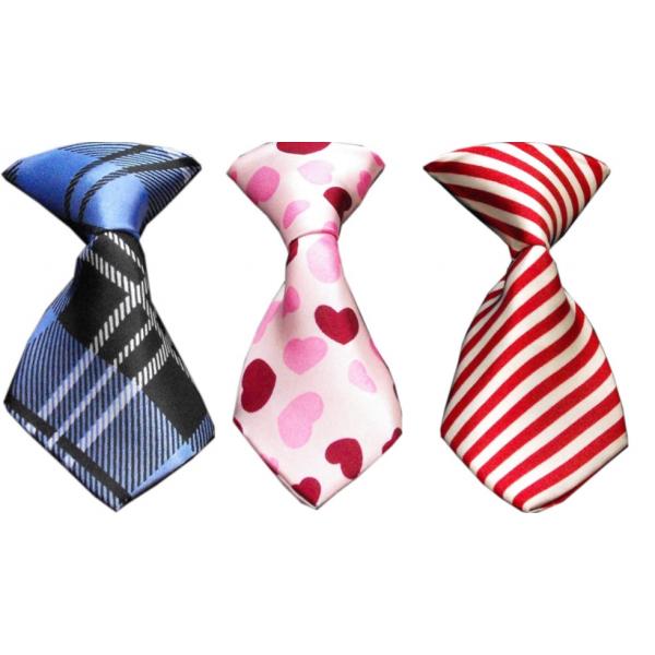 MR- The Dog Neck Tie